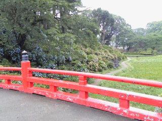 小田原城3.jpg