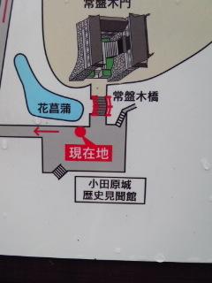 小田原城4.jpg